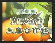 宜蘭縣蘭陽金柑生產合作社